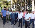 Başkan Albayrak, Proje ve Yatırımları İnceledi